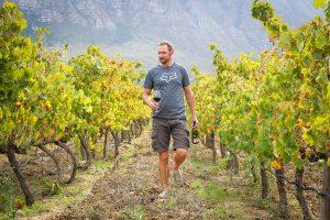 Saronsberg Wine Estate - Wine Farm - Tulbagh