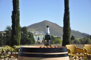 Marianne Wine Estate, Stellenbosch, Western Cape